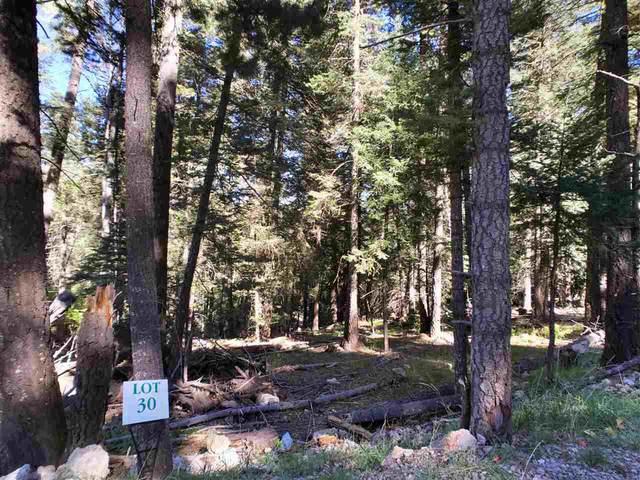 21 Elk Ridge, Cloudcroft, NM 88317 (MLS #165294) :: Assist-2-Sell Buyers and Sellers Preferred Realty