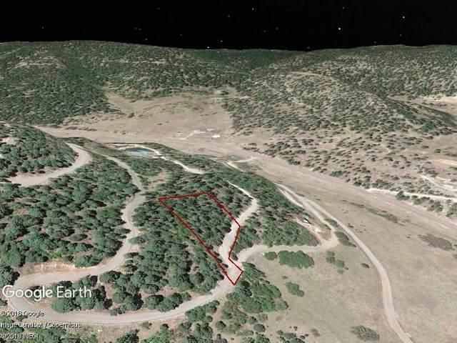 18 Elk Ridge, Cloudcroft, NM 88317 (MLS #165297) :: Assist-2-Sell Buyers and Sellers Preferred Realty
