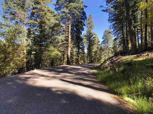 15 Elk Ridge, Cloudcroft, NM 88317 (MLS #165300) :: Assist-2-Sell Buyers and Sellers Preferred Realty