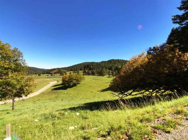 9 Elk Meadows, Cloudcroft, NM 88317 (MLS #165303) :: Assist-2-Sell Buyers and Sellers Preferred Realty