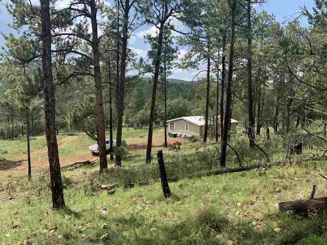 545 Walker Canyon Rd, Mayhill, NM 88339 (MLS #165342) :: Assist-2-Sell Buyers and Sellers Preferred Realty