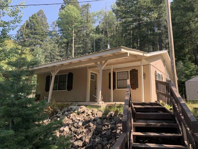 504 Balsam Cir, Cloudcroft, NM 88317 (MLS #165365) :: Assist-2-Sell Buyers and Sellers Preferred Realty