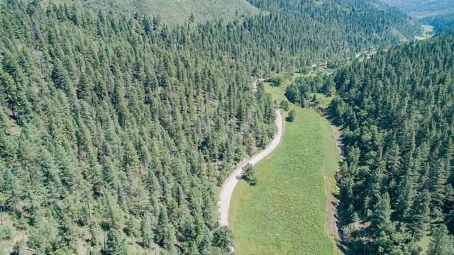 Upper Rio Penasco Rd, Cloudcroft, NM 88317 (MLS #165376) :: Assist-2-Sell Buyers and Sellers Preferred Realty