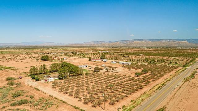 10 Estancia Rd, Tularosa, NM 88352 (MLS #165383) :: Assist-2-Sell Buyers and Sellers Preferred Realty