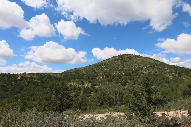 Burns Dr, Timberon, NM 88350 (MLS #165396) :: Assist-2-Sell Buyers and Sellers Preferred Realty