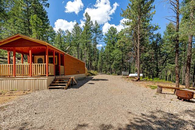 54 Scenic Loop, Cloudcroft, NM 88317 (MLS #165401) :: Assist-2-Sell Buyers and Sellers Preferred Realty