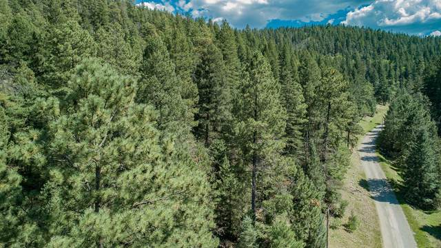 Young Canyon Rd, Cloudcroft, NM 88317 (MLS #165413) :: Assist-2-Sell Buyers and Sellers Preferred Realty