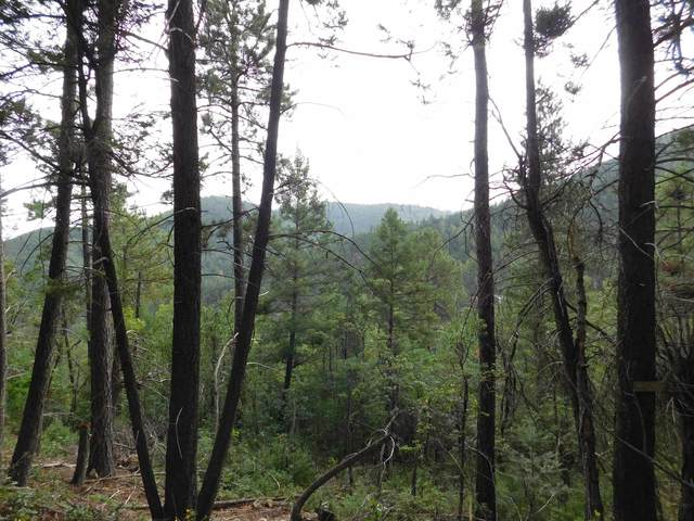Devils Tower Ln, High Rolls Mountain Park, NM 88325 (MLS #165421) :: Assist-2-Sell Buyers and Sellers Preferred Realty