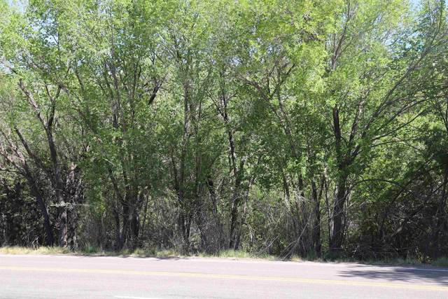 Hwy 82, High Rolls Mountain Park, NM 88325 (MLS #165423) :: Assist-2-Sell Buyers and Sellers Preferred Realty