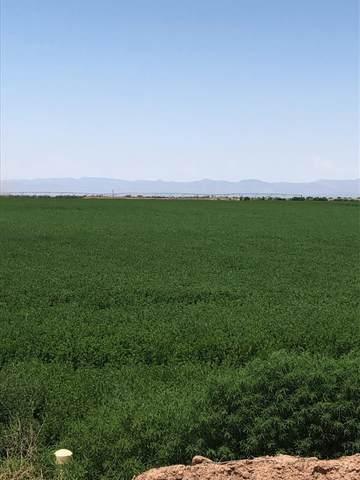 Prairie Trl, Tularosa, NM 88352 (MLS #165424) :: Assist-2-Sell Buyers and Sellers Preferred Realty