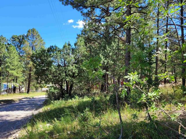 Valley View Av, Mayhill, NM 88339 (MLS #165468) :: Assist-2-Sell Buyers and Sellers Preferred Realty