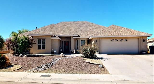2975 Birdie Lp, Alamogordo, NM 88310 (MLS #165520) :: Assist-2-Sell Buyers and Sellers Preferred Realty