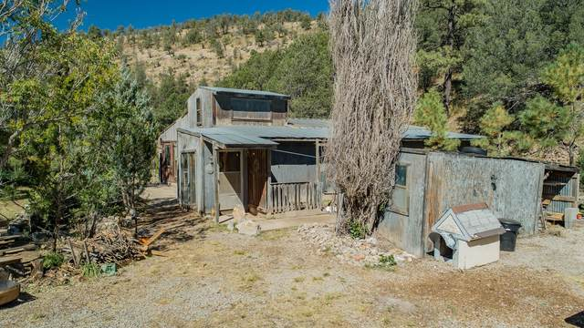 73 Agua Chiquita Rd, Weed, NM 88354 (MLS #165529) :: Assist-2-Sell Buyers and Sellers Preferred Realty