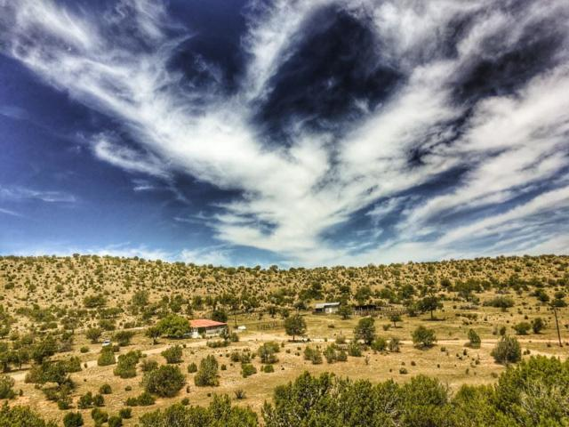 83 Shockley Lake Rd, Pinon, NM 88344 (MLS #156374) :: Assist-2-Sell Buyers and Sellers Preferred Realty
