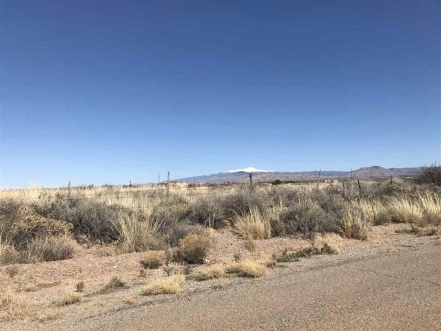Tulie Gate Rd, Tularosa, NM 88352 (MLS #157473) :: Assist-2-Sell Buyers and Sellers Preferred Realty
