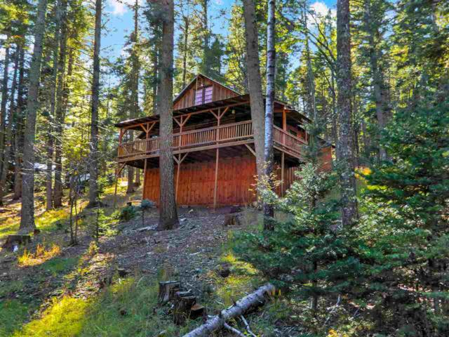 63 Spring Ave, Cloudcroft, NM 88317 (MLS #157614) :: Assist-2-Sell Buyers and Sellers Preferred Realty