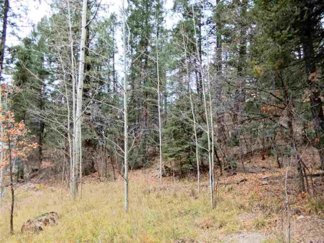 502 Chautauqua Canyon Blvd #3, Cloudcroft, NM 88317 (MLS #157726) :: Assist-2-Sell Buyers and Sellers Preferred Realty