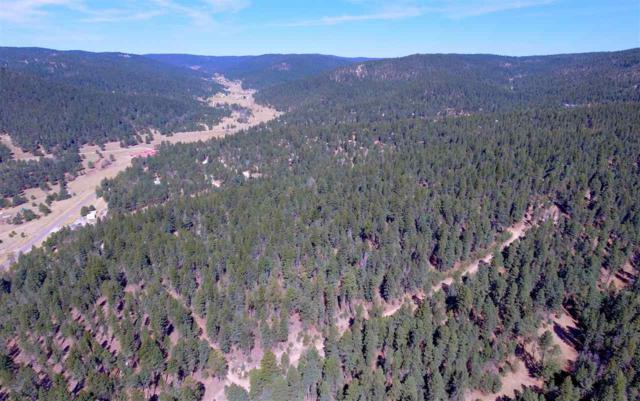 26 Pinos Verdes, Cloudcroft, NM 88317 (MLS #158071) :: Assist-2-Sell Buyers and Sellers Preferred Realty