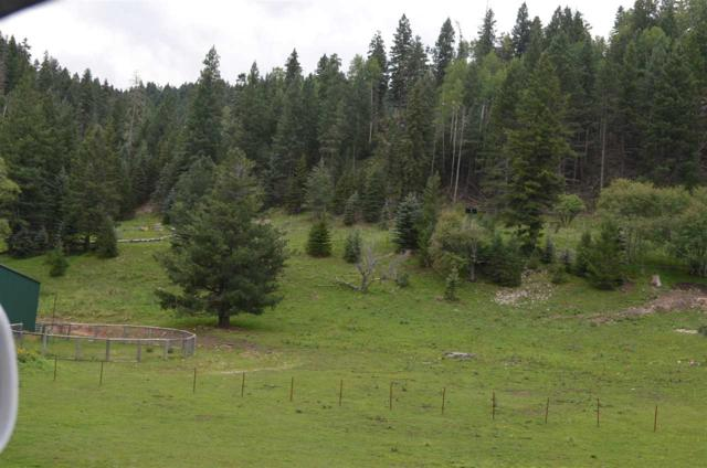 90 Pierce Canyon Rd, Cloudcroft, NM 88317 (MLS #158560) :: Assist-2-Sell Buyers and Sellers Preferred Realty