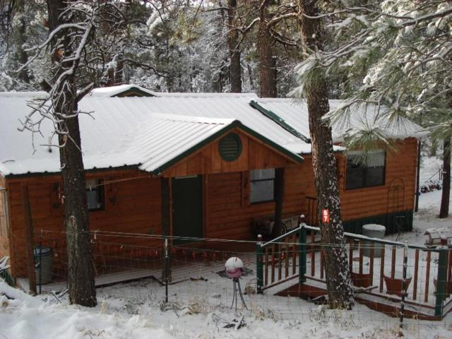 57 Sherwood Forest, Cloudcroft, NM 88317 (MLS #158788) :: Assist-2-Sell Buyers and Sellers Preferred Realty