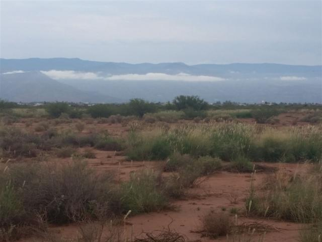 Riata Rd, Tularosa, NM 88352 (MLS #159147) :: Assist-2-Sell Buyers and Sellers Preferred Realty