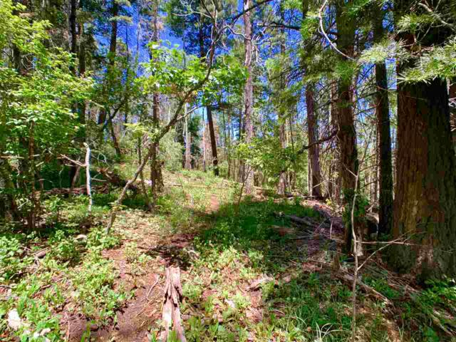 609 Maple Dr, Cloudcroft, NM 88317 (MLS #159956) :: Assist-2-Sell Buyers and Sellers Preferred Realty