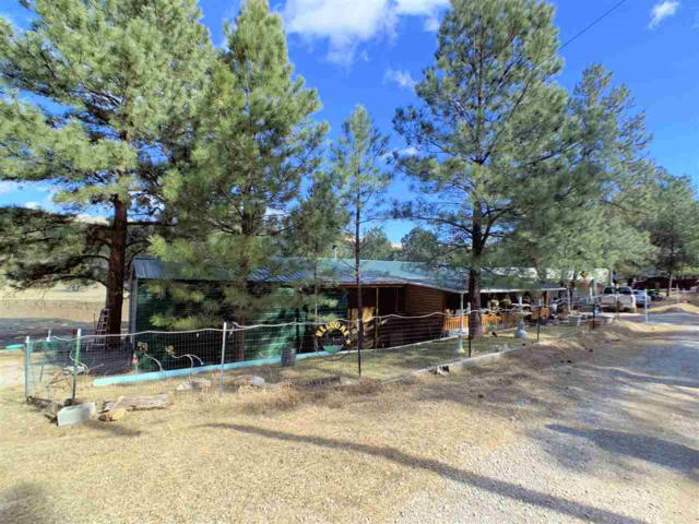 67 Valley Ave, Mayhill, NM 88339 (MLS #160064) :: Assist-2-Sell Buyers and Sellers Preferred Realty