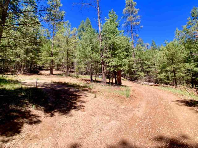 10 Eagle Lp #1, Cloudcroft, NM 88317 (MLS #160121) :: Assist-2-Sell Buyers and Sellers Preferred Realty