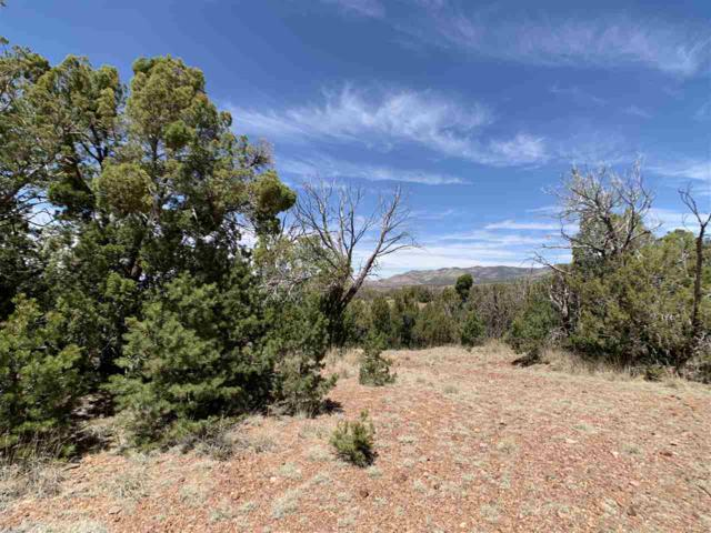 22 Red Rock Rd, High Rolls Mountain Park, NM 88325 (MLS #160224) :: Assist-2-Sell Buyers and Sellers Preferred Realty