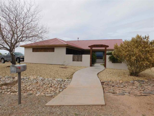3 Willow Ct, La Luz, NM 88337 (MLS #160230) :: Assist-2-Sell Buyers and Sellers Preferred Realty
