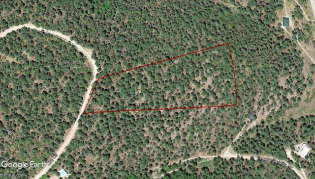 69 Lee Cir, Cloudcroft, NM 88317 (MLS #160278) :: Assist-2-Sell Buyers and Sellers Preferred Realty