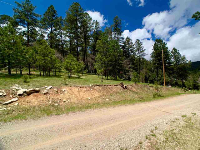 20 Billie Jean Way, Cloudcroft, NM 88317 (MLS #160710) :: Assist-2-Sell Buyers and Sellers Preferred Realty