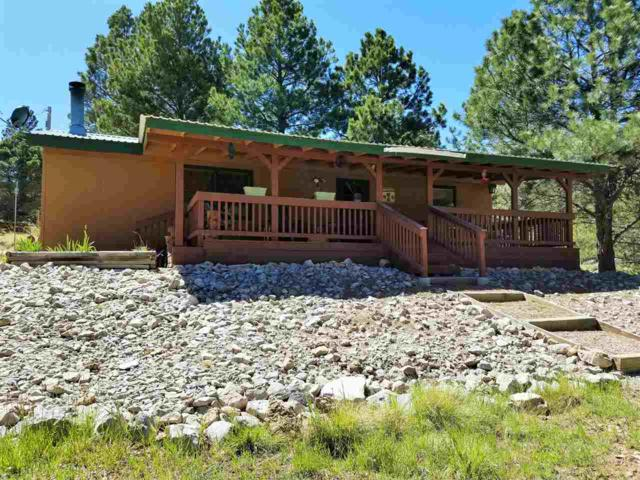 31 Canyon Trl, Cloudcroft, NM 88317 (MLS #160745) :: Assist-2-Sell Buyers and Sellers Preferred Realty