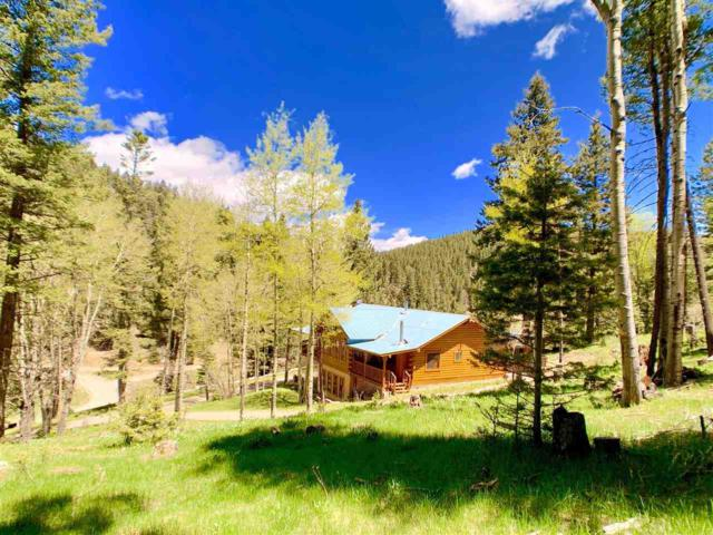 5 Carrie Camp Rd, Cloudcroft, NM 88317 (MLS #160766) :: Assist-2-Sell Buyers and Sellers Preferred Realty