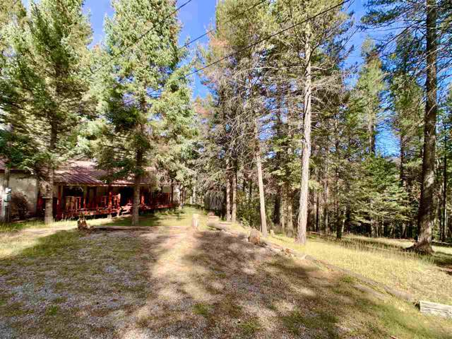 22 Cour De Leon, Mayhill, NM 88339 (MLS #160809) :: Assist-2-Sell Buyers and Sellers Preferred Realty