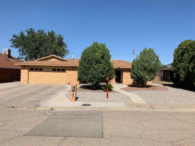103 Sunrise Av, Alamogordo, NM 88310 (MLS #160876) :: Assist-2-Sell Buyers and Sellers Preferred Realty
