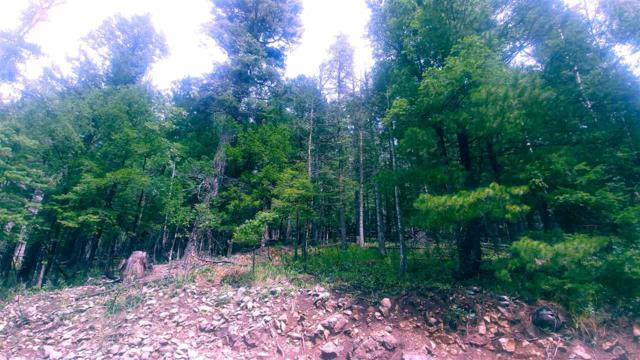 706 Balsam Dr, Cloudcroft, NM 88317 (MLS #161223) :: Assist-2-Sell Buyers and Sellers Preferred Realty