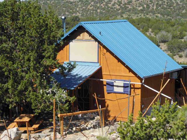146 Sue Layne, Cloudcroft, NM 88317 (MLS #161637) :: Assist-2-Sell Buyers and Sellers Preferred Realty