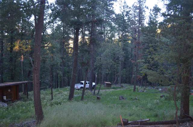 16 Cowan Rd, Mayhill, NM 88339 (MLS #161702) :: Assist-2-Sell Buyers and Sellers Preferred Realty