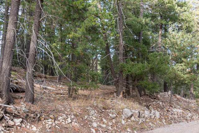 Raspberry Hill Rd, Cloudcroft, NM 88317 (MLS #161731) :: Assist-2-Sell Buyers and Sellers Preferred Realty