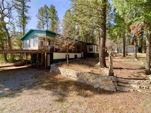 18 Cour De Leon, Mayhill, NM 88339 (MLS #161759) :: Assist-2-Sell Buyers and Sellers Preferred Realty