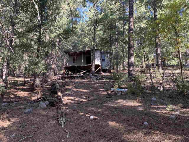 23 Woodchuck Ln #3, Cloudcroft, NM 88317 (MLS #161784) :: Assist-2-Sell Buyers and Sellers Preferred Realty