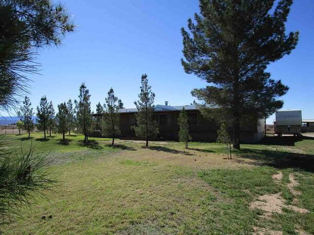 61 S Pecan Rd, Tularosa, NM 88352 (MLS #162353) :: Assist-2-Sell Buyers and Sellers Preferred Realty