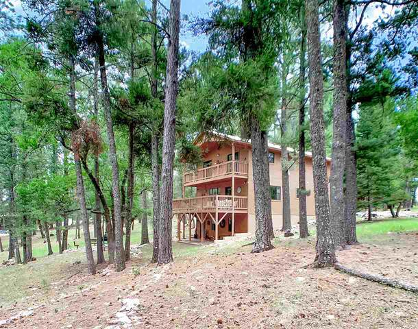 22 Timber Wolf #1, Mayhill, NM 88339 (MLS #163347) :: Assist-2-Sell Buyers and Sellers Preferred Realty