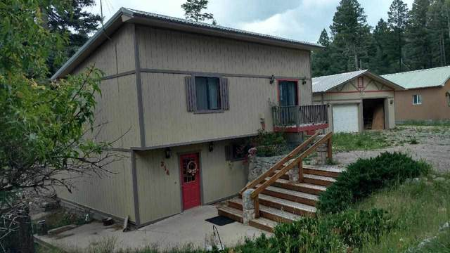 214 Aspen Cir, Cloudcroft, NM 88317 (MLS #163371) :: Assist-2-Sell Buyers and Sellers Preferred Realty