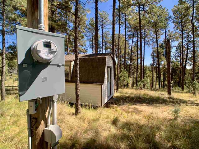 17 Gail Rd, Mayhill, NM 88339 (MLS #163514) :: Assist-2-Sell Buyers and Sellers Preferred Realty