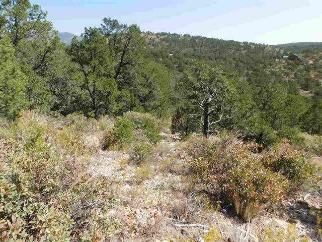Bear Ln, Timberon, NM 88350 (MLS #163540) :: Assist-2-Sell Buyers and Sellers Preferred Realty