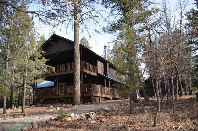 26 Timber Wolf #1, Mayhill, NM 88339 (MLS #163936) :: Assist-2-Sell Buyers and Sellers Preferred Realty