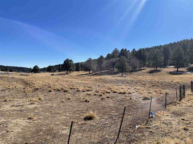 Taos, Cloudcroft, NM 88317 (MLS #164053) :: Assist-2-Sell Buyers and Sellers Preferred Realty