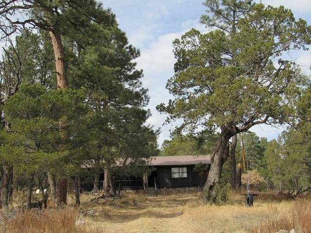 91 Brownwood Rd #7, Timberon, NM 88350 (MLS #164167) :: Assist-2-Sell Buyers and Sellers Preferred Realty